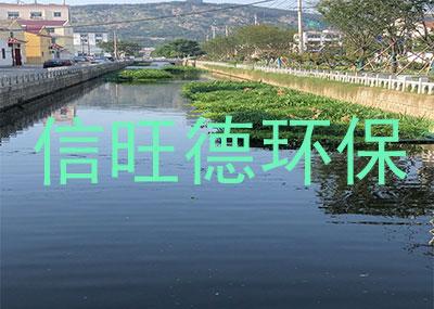 通州生态浮床案例展示