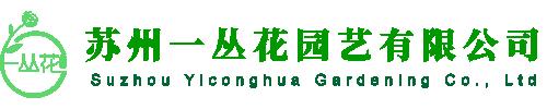 蘇州綠植租賃公司
