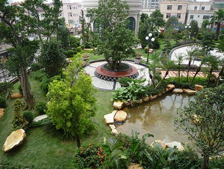 上海植物租賃的注意事項有哪些呢