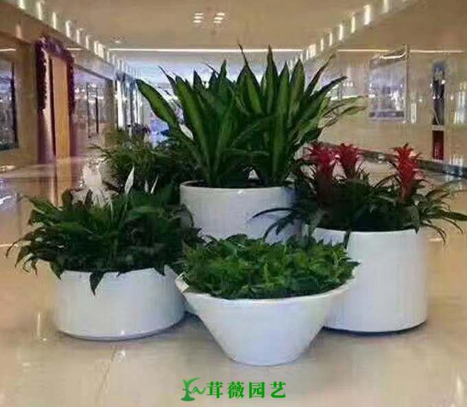 藝術玻璃鋼花盆 (14)