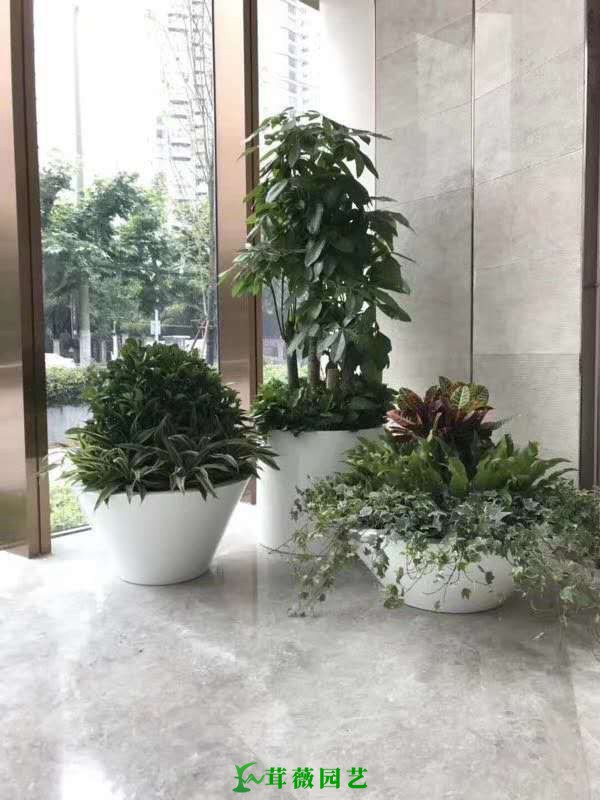 藝術玻璃鋼花盆 (11)