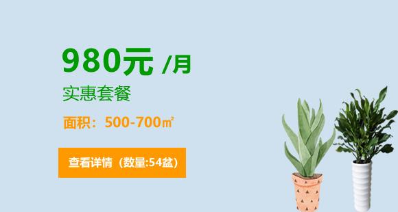 2020热门980元套餐