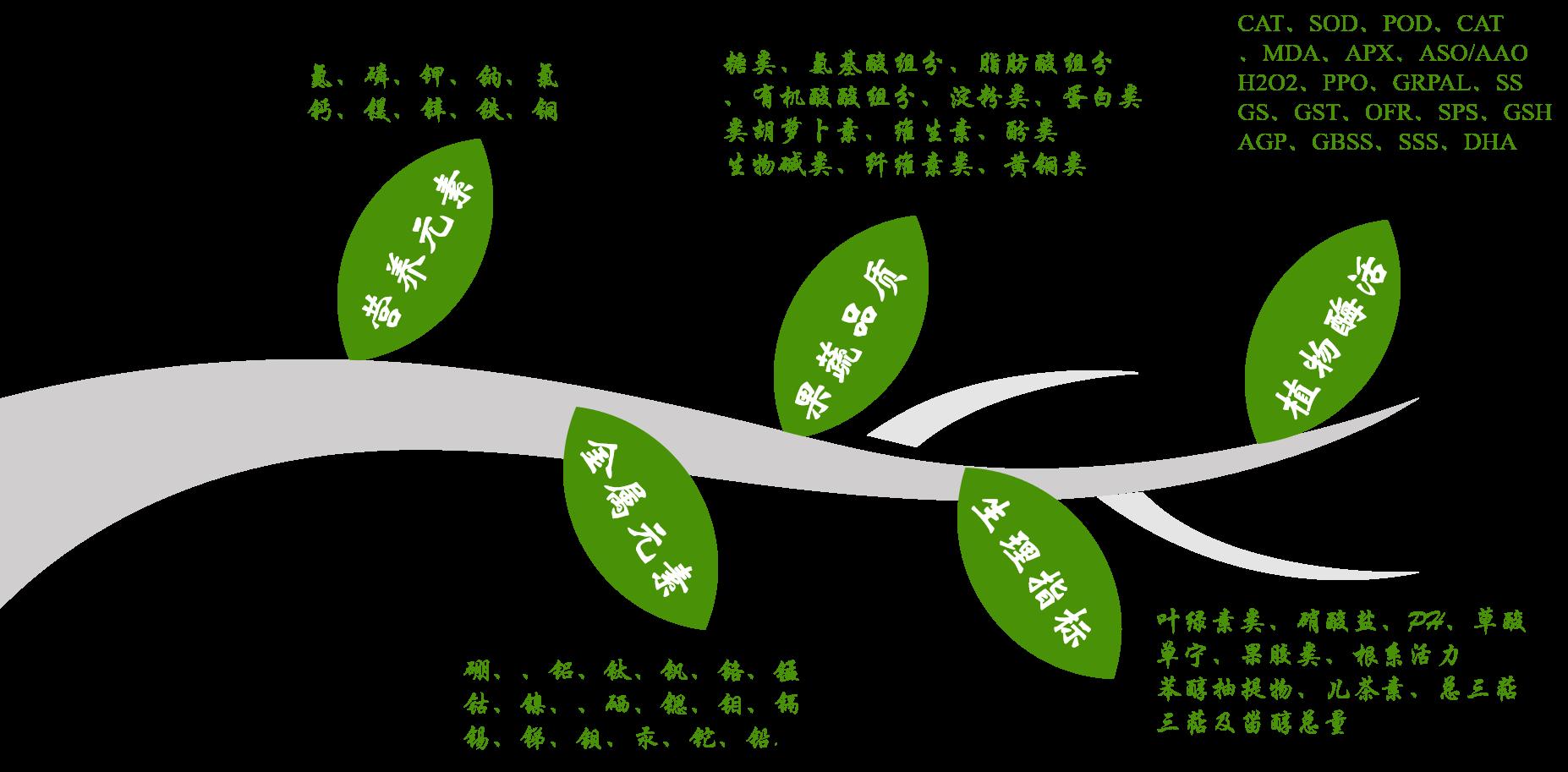 植物理化检测列表