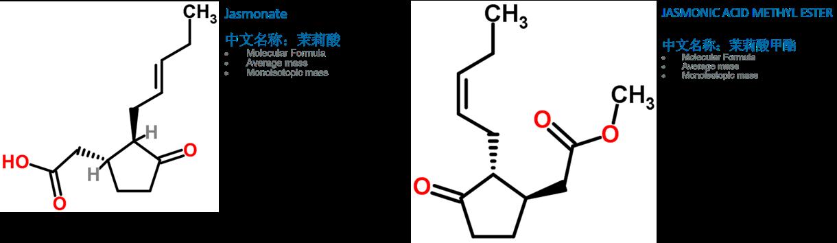 茉莉酸(JA)和茉莉酸甲酯(MeJA)的化学方程式