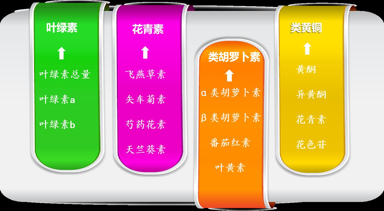 植物色素检测-叶绿素,花青素,类胡萝卜素,类黄酮