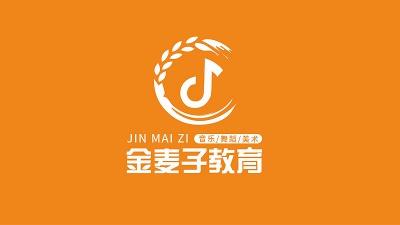 湖南金麦子教育集团校园文化建设,网站建设