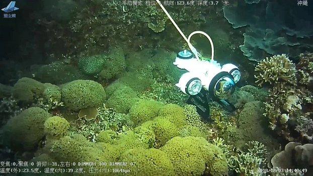 水产养殖,你需要一款水下机器人...
