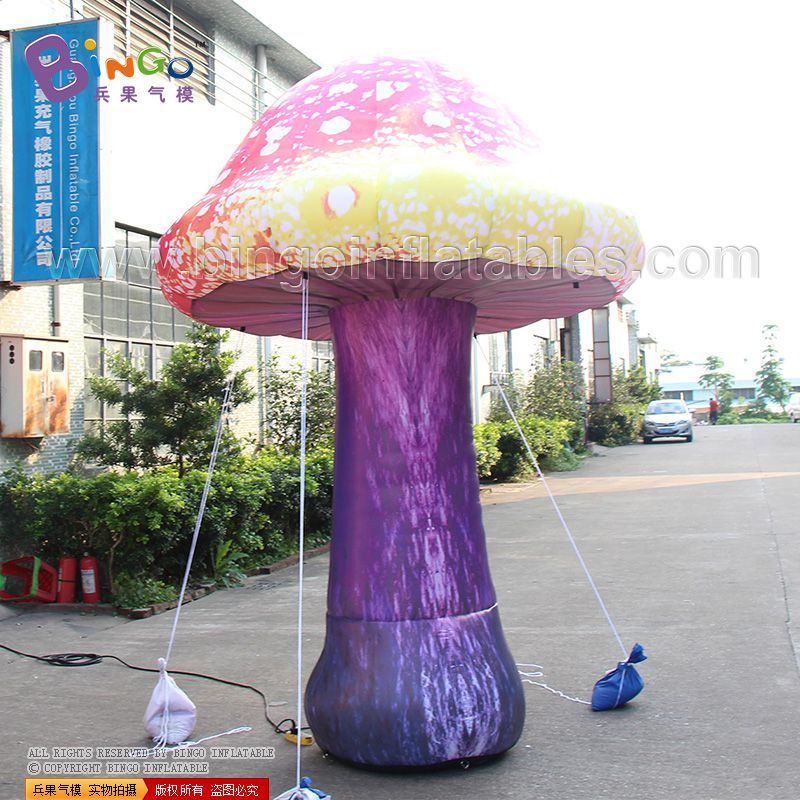蘑菇3米BG-A1037