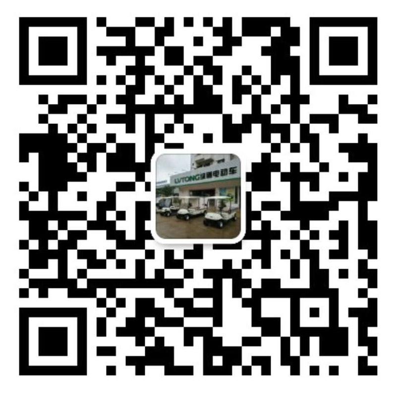 海南電動車