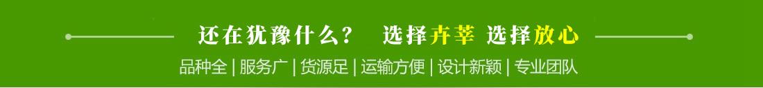 上海植物租赁及绿植租赁选上海卉莘园林绿化有限公司