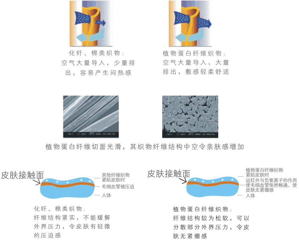 植物蛋白纖維模材材