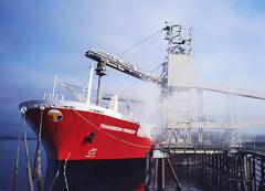 輪船軸承-船舶專用軸承