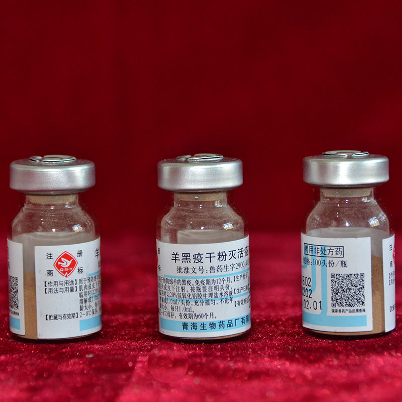 羊黑疫干粉滅活疫苗