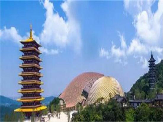 南京佛顶塔项目案例展示