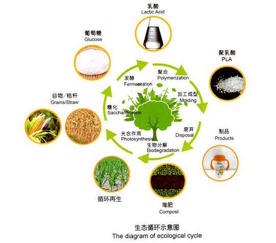 看丰原聚乳酸PLA生态循环,创绿色环保环境