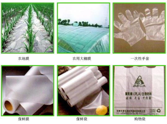 """丰原聚乳酸践行""""绿色方案""""倡议可降解聚乳酸替代塑料制品"""