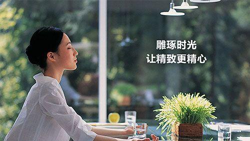 环保设备网站建设 - Pelican 湃能