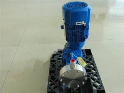 PS2E089A意大利SEKO柱塞计量泵