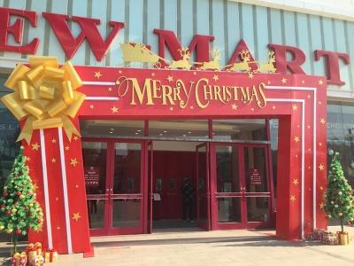 圣诞节圆弧门装饰