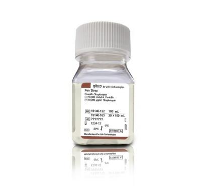 15140122|Gibco™双抗Penicillin-Streptomycin, Liquid