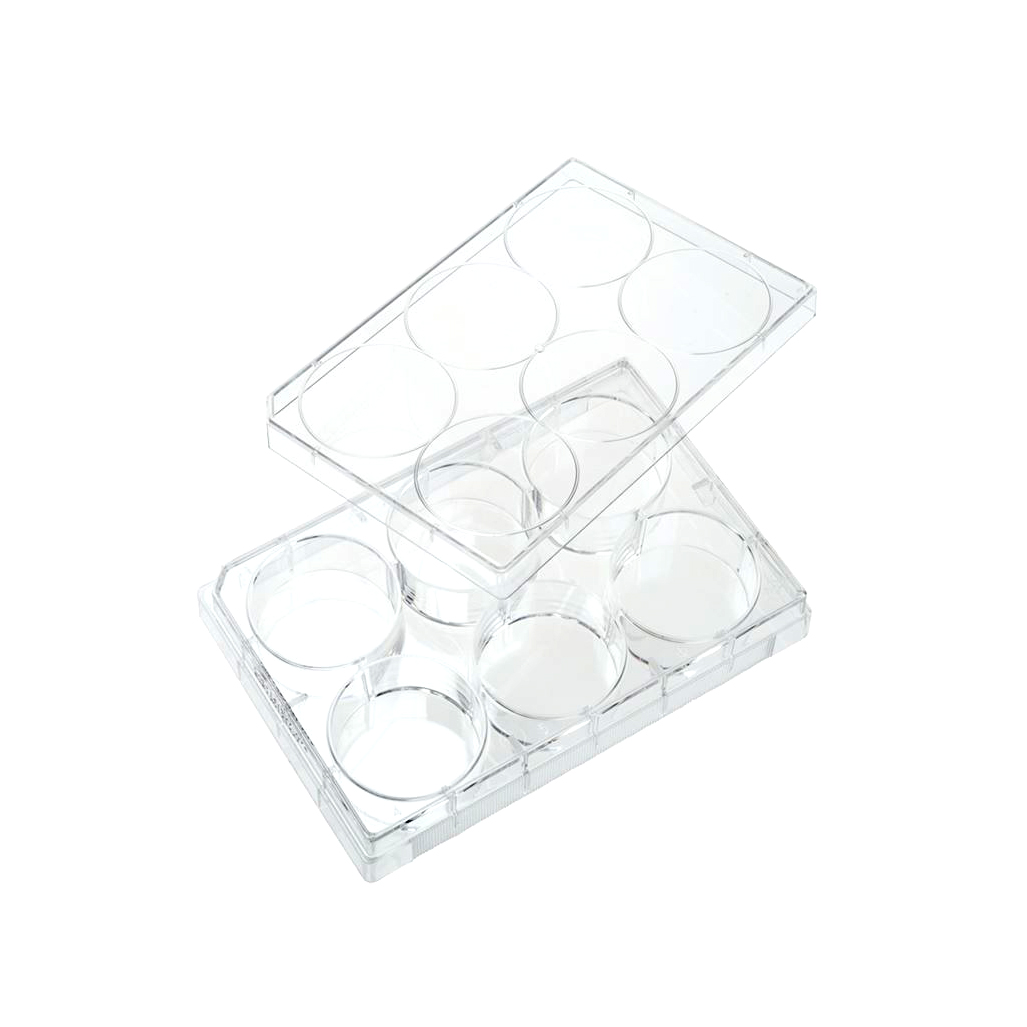 Costar® 6-well Clear TC-treated Multiple Well Plates
