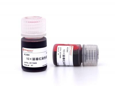 KC1084|kingmorn|10×丽春红染色液