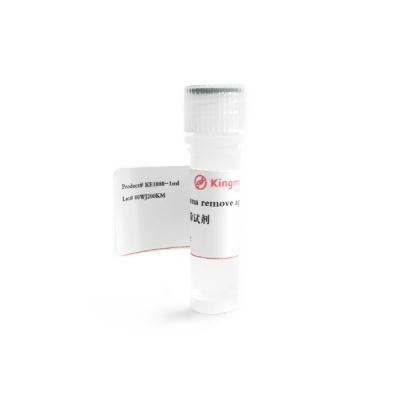 KE1080|kingmorn|支原体去除试剂Mycoplasma remove agent