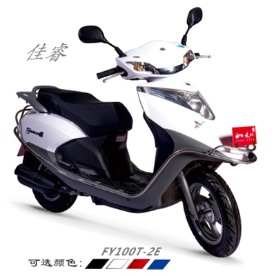 FY100T-2E 佳睿