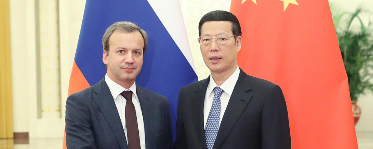 张高丽副总理与外国总理会面