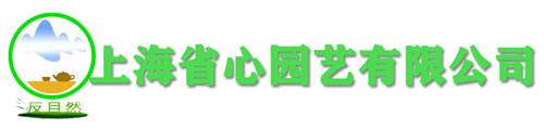 上海植物租赁