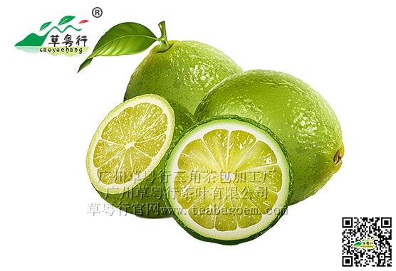 药食同源之柠檬三角茶包
