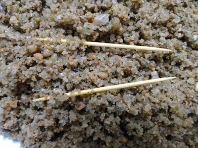廣州、東莞、珠海、佛山、大量低價批發:海沙(海砂)