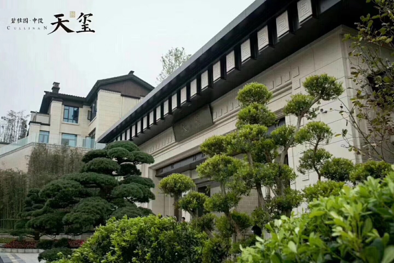碧桂园·天玺别墅项目