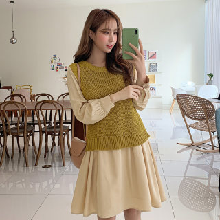 2020韩版女装春装新款气质两件套时尚连衣裙