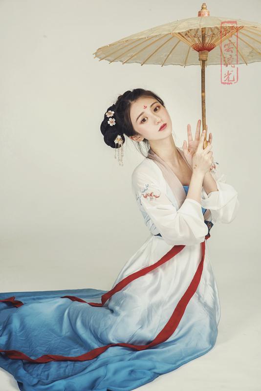 古典女装宋制刺绣直领四破裙汉服新款汉服女装对襟齐腰襦裙