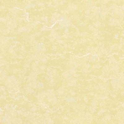 HPV8012-800*800