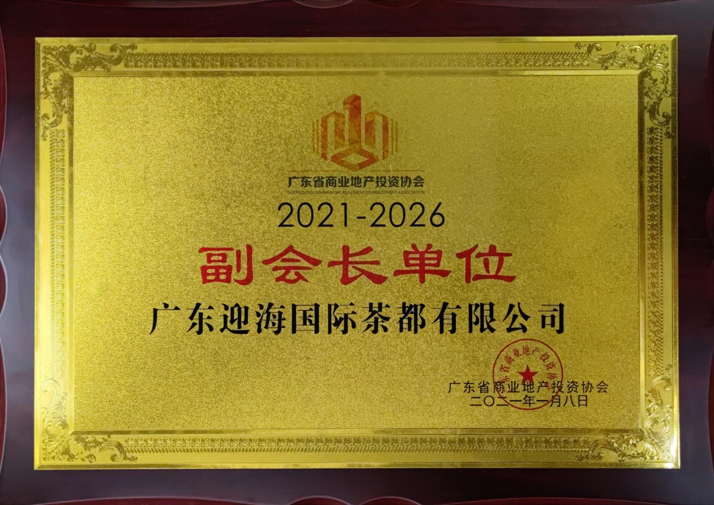 11—广东省商业地产投资协会 (副会长单位)2021 (1)