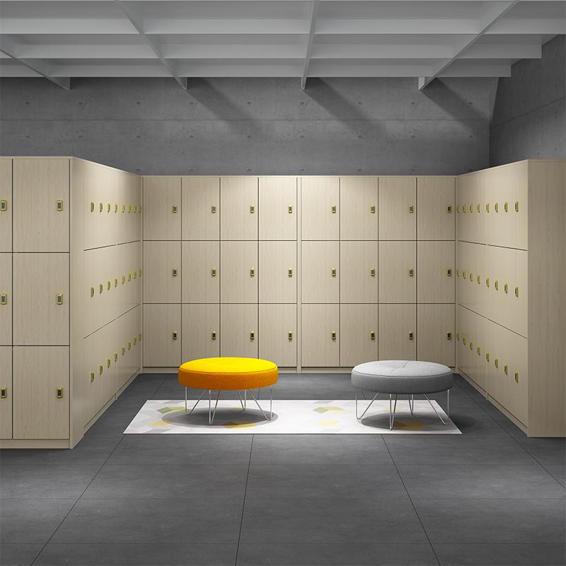 现代时尚浴室更衣柜储物柜桑拿洗浴中心感应锁储物柜