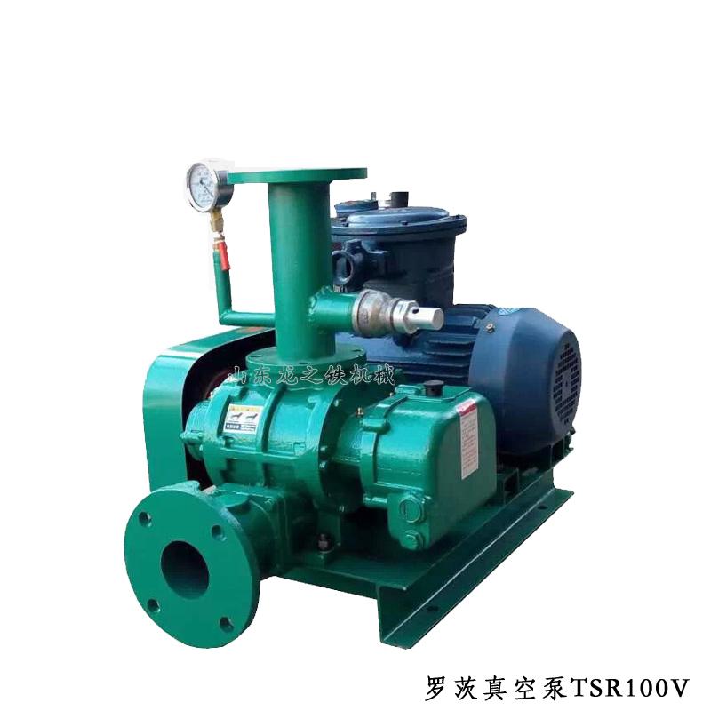 罗茨真空泵TSR100V