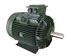 TOSHIBA 中型电动机