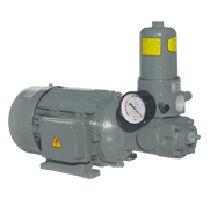 A-RYUNG亚隆齿轮泵AMTP-HAVBF
