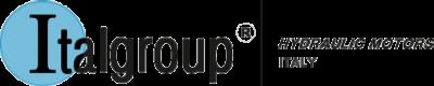 ITALGROUP,意大利ITALGROUP液压马达,分流器,速度传感器,高低速电机,阀门,减速器
