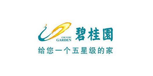 碧桂园 样板房彩绘 墙体彩绘 广州壹家艺术有限公司墙绘合作