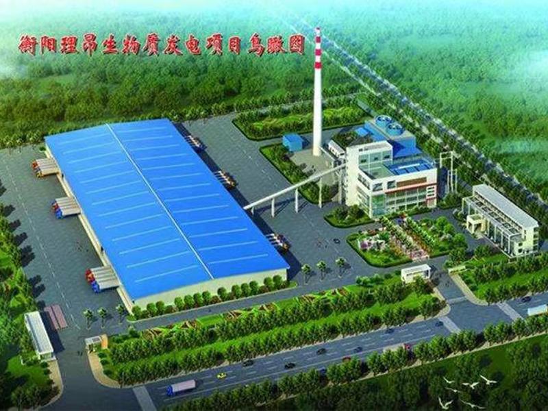 理昂生物发电集团