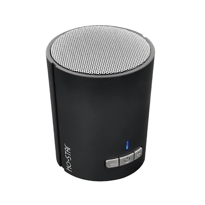 Portable bluetooth speaker BT-320