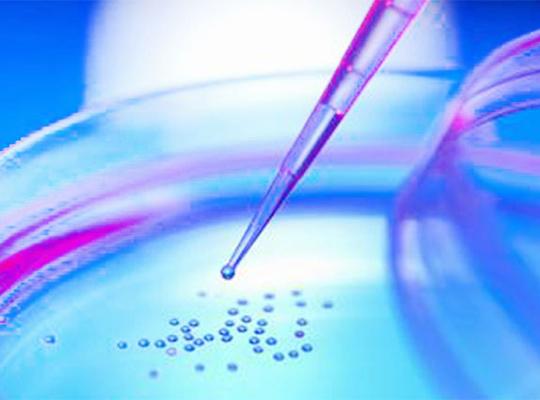 国内外干细胞研究成果介绍