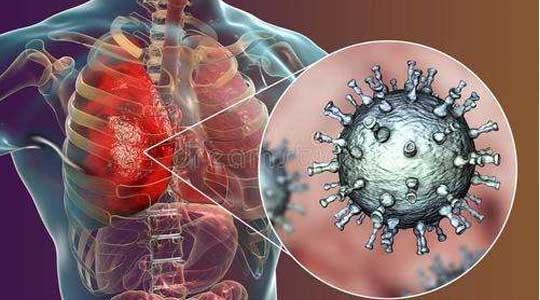 2020年1月29日第28期分享主题:抵抗新型肺炎提高自身免疫力是硬道理
