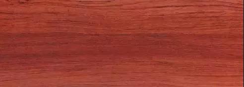 金富丽丨木材我知道·德国红榉木