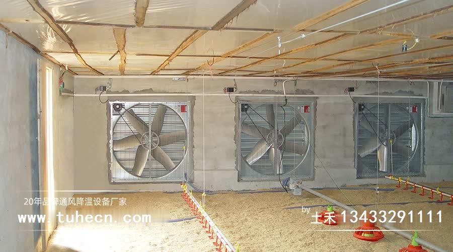 养猪场夏季如何降温?土禾风机水帘提供可靠降温解决方案!