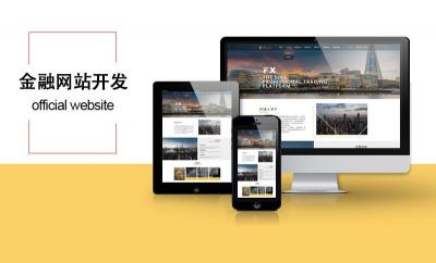 金融网站定制开发网站建设网站设计企业官网